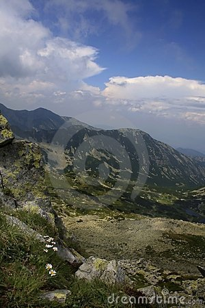 Carpathian in Romania