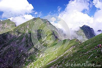 Carpathians creast