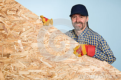 Carpenter holds a sheet plywood