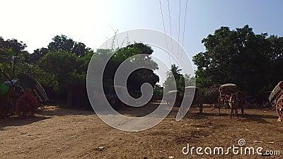 Carrelli del cavallo di Inwa, Myanmar archivi video