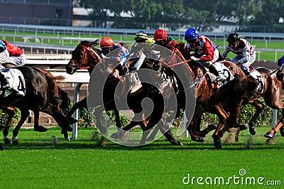Carrera de caballos Imagen de archivo editorial