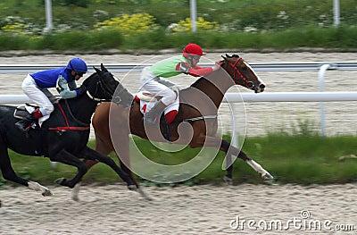 Carrera de dos caballos