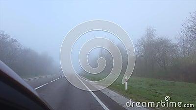 Carretera cerca de bosques y niebla metrajes