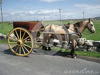 Carriage on Aran Islands
