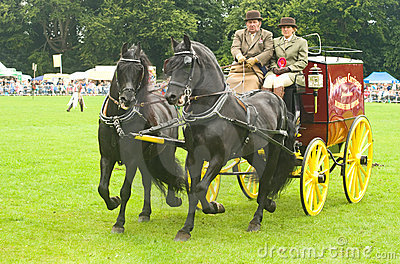 Carriage drawn by pair of horses. Editorial Stock Photo