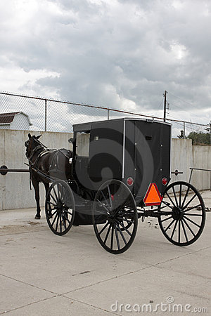 Carriage with a horse