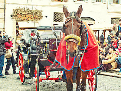 Carriage and horse Editorial Image