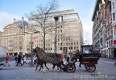 A carriage horse on Amsterdam Dam square Editorial Photo
