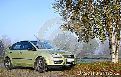 Carro compacto verde