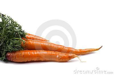 Carrot close up