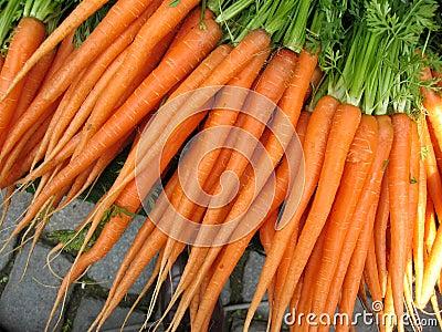 Carrot from garden