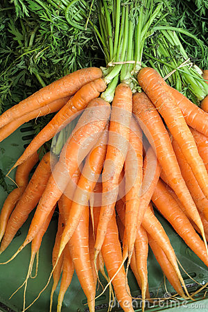 Free Carrots - Carrots Royalty Free Stock Photography - 47407557