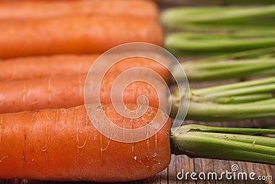 Carrots closeup