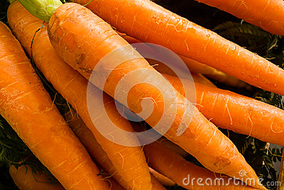 Carrots on display
