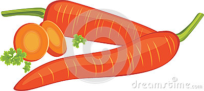 Carrots with slices isolated on the white