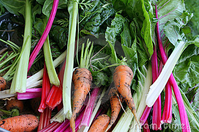 Carrots and swiss chard