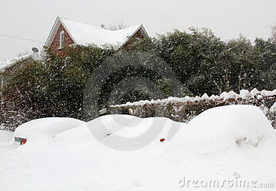 Cars Buried in Snow Editorial Stock Image
