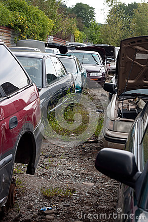 Cars in the Junk Yard