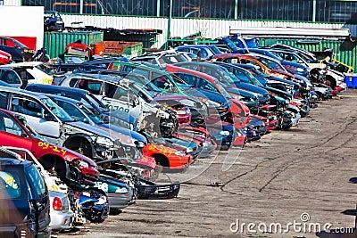 Cars in a junkyard