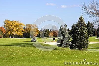 Cart Golfers On The Fairway