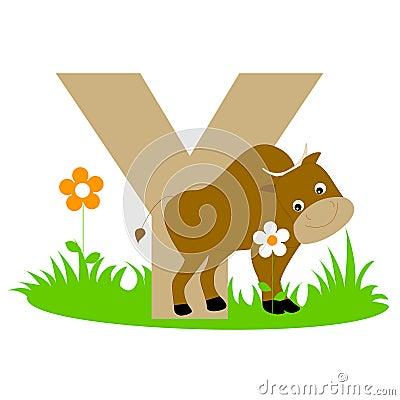 Carta animal del alfabeto - Y