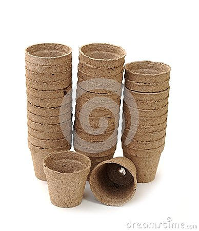Carton vases