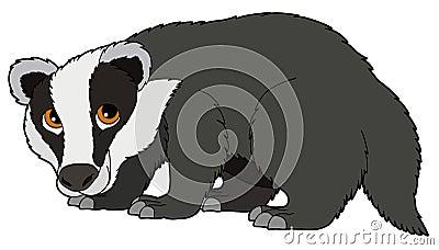 Cartoon animal - badger - illustration for the children