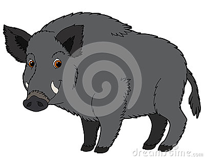 Cartoon animal - boar - illustration for the children