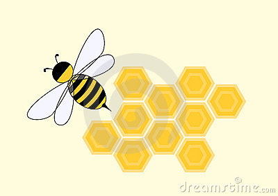 Cartoon bee in honeycomb