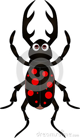 Cartoon beetle on white background