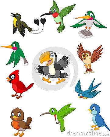 Free Cartoon Birds Collection Set Stock Image - 115768781