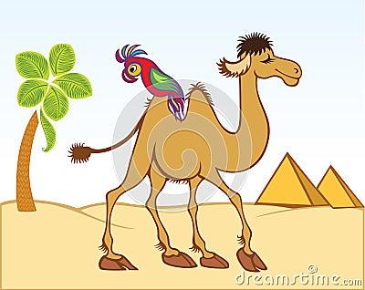 Cartoon camel and parrot