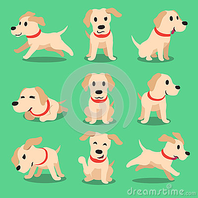 Cartoon character labrador dog poses Vector Illustration