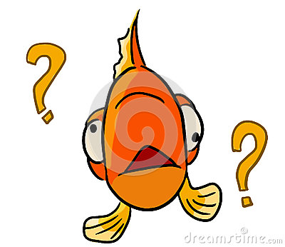 Cartoon color animal expression fish forget
