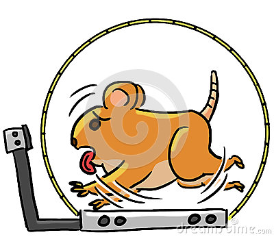 Cartoon color animal expression hamster exercise