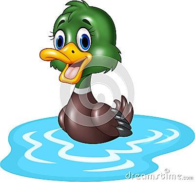 Free Cartoon Duck Floats On Water Stock Photos - 60891403