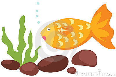 cartoon fish and coral