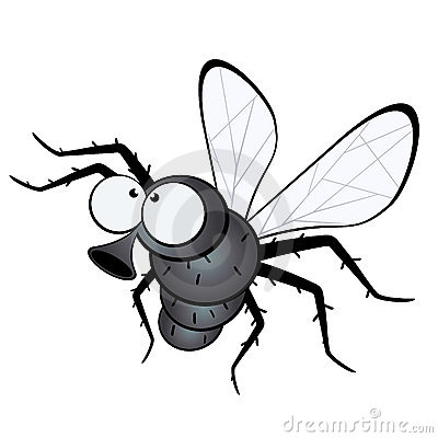 Funny cartoon illustration of a fly, isolated on a white background.