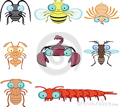 Cartoon graphic insects and arthropod