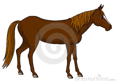 Cartoon horse standing
