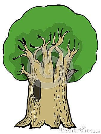Cartoon illustration of oak