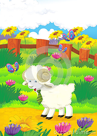 Cartoon illustration with sheep on the farm - illu
