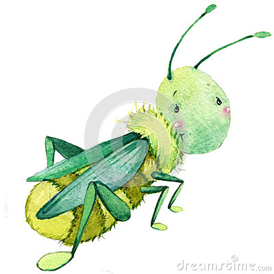 Free Cartoon Insect Grasshopper Watercolor Illustration. Stock Photos - 56222033