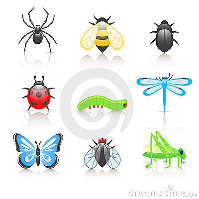 Free Cartoon Insect Icon Set Stock Photo - 13130750