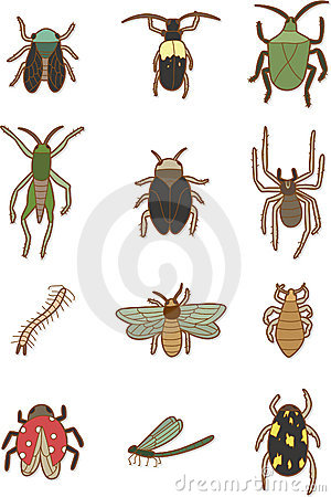 Cartoon insects icon