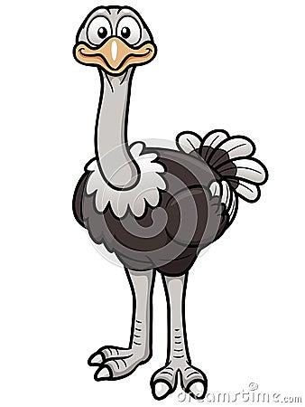 Free Cartoon Ostrich Stock Photo - 29888940