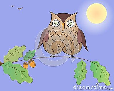 Cartoon an owl on an oak branch.