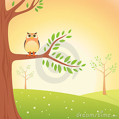 Cartoon Owl On The Tree Royalty Free Stock Images Image