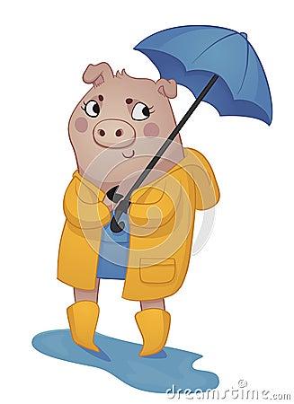 Cartoon Pig in Rain Gear