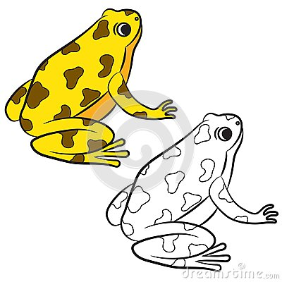 Cartoon Of Poison Dart Frog Coloring Page Stock Vector